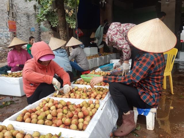 Phá kỷ lục 60 năm, Bắc Giang thu hơn 6.000 tỷ đồng từ quả vải - 2