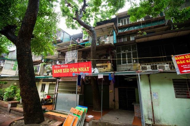 """Kỳ lạ lối kiến trúc """"cây mọc xuyên nhà"""" ở khu tập thể cũ Hà Nội - 14"""