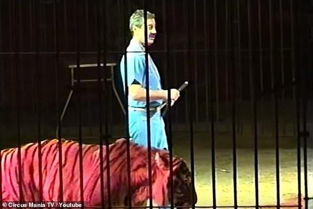 Nghệ sĩ xiếc thú hàng đầu thế giới tử vong vì bị đàn hổ tấn công - 3