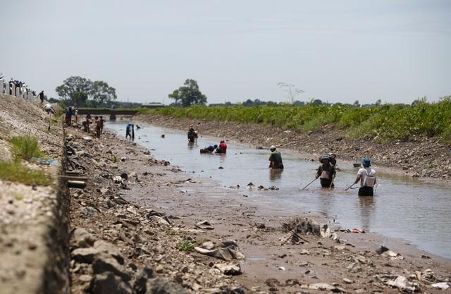 Đội nắng giữa trưa bắt cá lộc sau bão ở ngoại thành Hà Nội - 2
