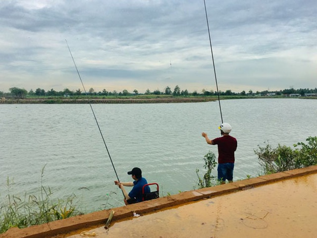 Giữa khu đô thị tiền tỉ, đàn ông Sài Gòn say sưa bắt cá - 3