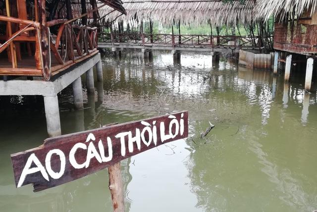 Thăm biểu tượng đường Hồ Chí Minh, ngắm cá thòi lòi, ốc len... lên bờ  - 3
