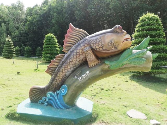 Thăm biểu tượng đường Hồ Chí Minh, ngắm cá thòi lòi, ốc len... lên bờ  - 8