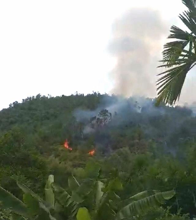 Đà Nẵng huy động hơn 100 bộ đội, dân quân dập đám cháy rừng - 2