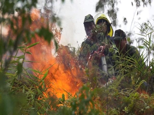 Đà Nẵng huy động hơn 100 bộ đội, dân quân dập đám cháy rừng - 1