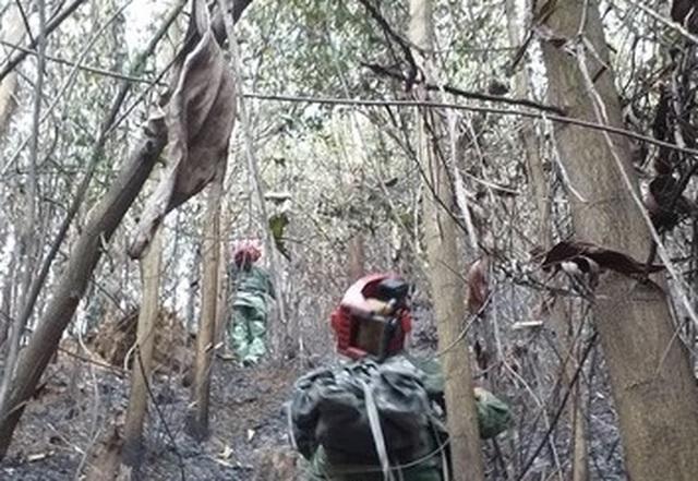 Đà Nẵng huy động hơn 100 bộ đội, dân quân dập đám cháy rừng - 4
