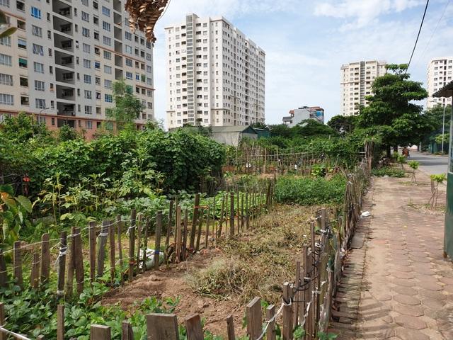 Hà Nội: Trúng đấu giá đất ở khu đô thị mới nhưng 10 năm... vẫn chưa được nhận đất - 1