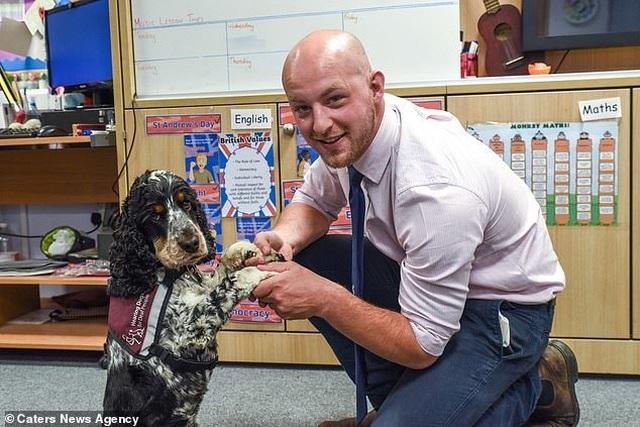 Anh: Chú chó thông minh giúp thầy giáo khiếm thính tự tin đứng trên bục giảng - 3