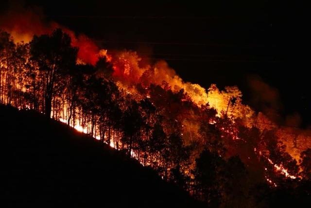 Rừng lại cháy ngút đỉnh, huy động hàng trăm người dập lửa trong đêm - 3