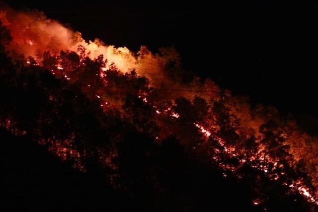 Rừng lại cháy ngút đỉnh, huy động hàng trăm người dập lửa trong đêm - 5