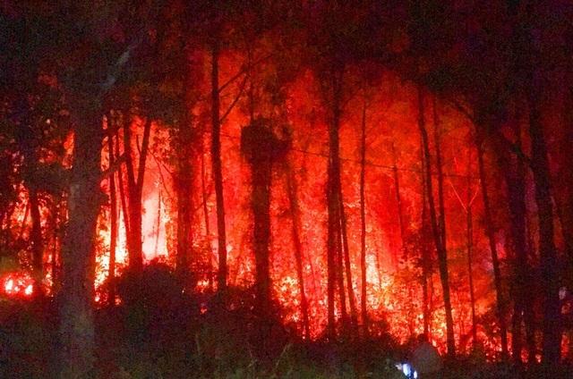 Rừng thông 30 năm tuổi gần lăng vua Khải Định ngùn ngụt cháy trong đêm - 3