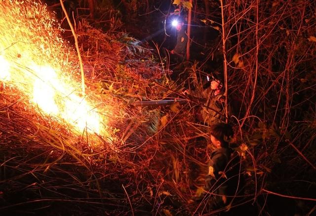 Hơn 500 người trắng đêm vật lộn với lửa rừng ngùn ngụt - 8