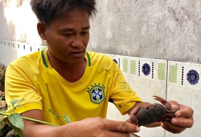Nhanh tay, tinh mắt cầm đèn đi vạch đá săn cua đặc sản ở đảo An Bình - 10