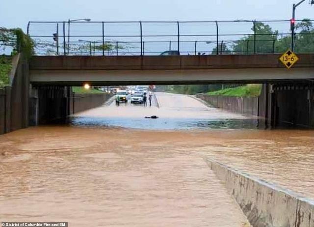 Thủ đô Wasington ngập nặng vì mưa lớn, Nhà Trắng cũng không thoát - 12