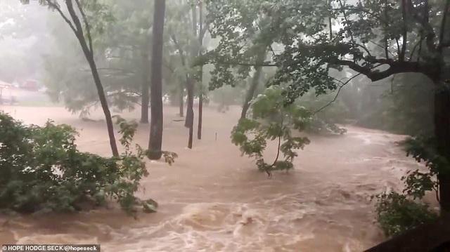 Thủ đô Wasington ngập nặng vì mưa lớn, Nhà Trắng cũng không thoát - 13