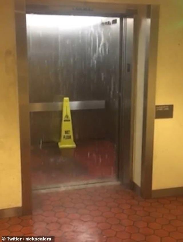 Thủ đô Wasington ngập nặng vì mưa lớn, Nhà Trắng cũng không thoát - 8