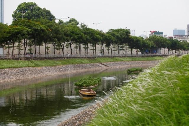 Sông Tô Lịch bất ngờ chuyển màu xanh sau khi nhận nước từ hồ Tây - 4