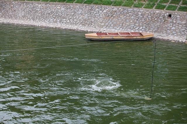Sông Tô Lịch bất ngờ chuyển màu xanh sau khi nhận nước từ hồ Tây - 7