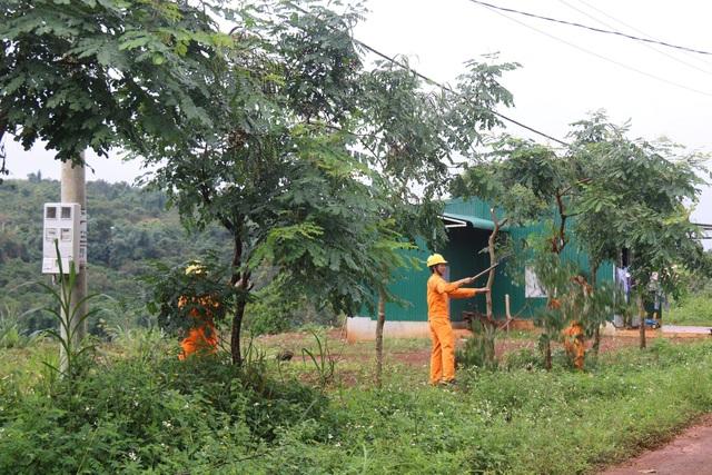 PC Đắk Nông đảm bảo an toàn lưới điện trong mùa mưa bão - 1