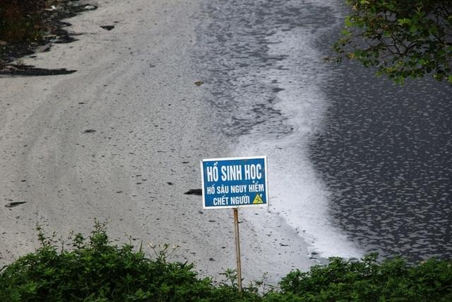 Cận cảnh những núi rác cao hơn ngôi nhà 4 tầng tại TP biển Sầm Sơn - 11