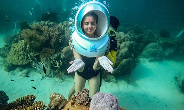 Đi bộ dưới đáy biển ngắm nhìn san hô - 3