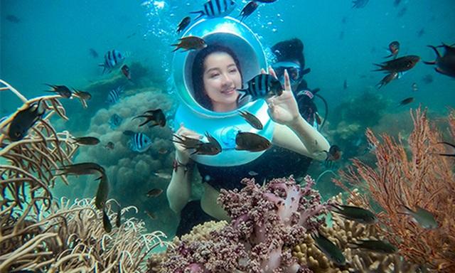 Đi bộ dưới đáy biển ngắm nhìn san hô - 4
