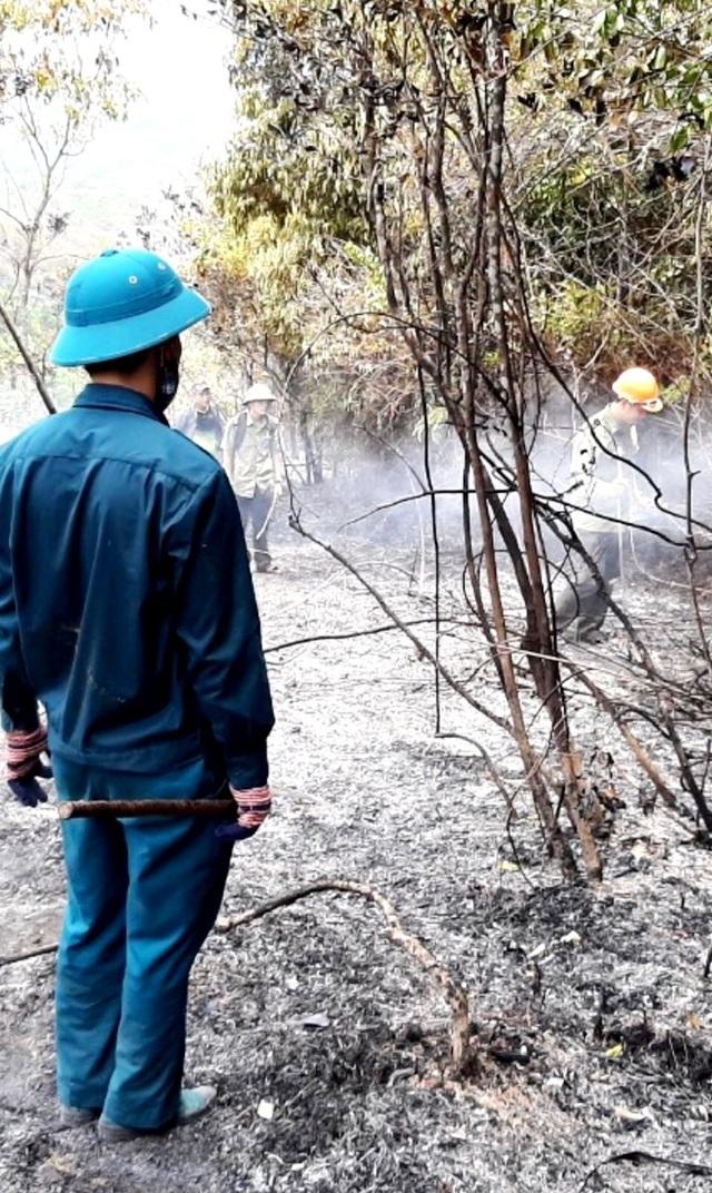 Dập tắt cháy rừng keo ở Quảng Nam