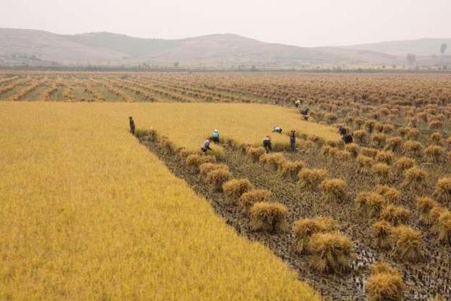 Ảnh độc: Triều Tiên đẹp như thiên đường khiến thế giới ngỡ ngàng - 14