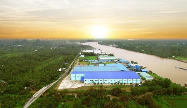 Tăng chuỗi giá trị cây dừa Việt Nam qua sản phẩm nước cốt dừa tươi - 4