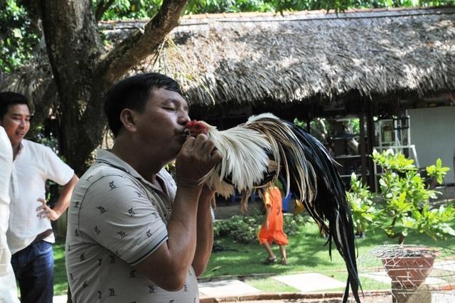 Vượt gần 300km đến Đồng Tháp… thi chọi gà truyền thống - 5