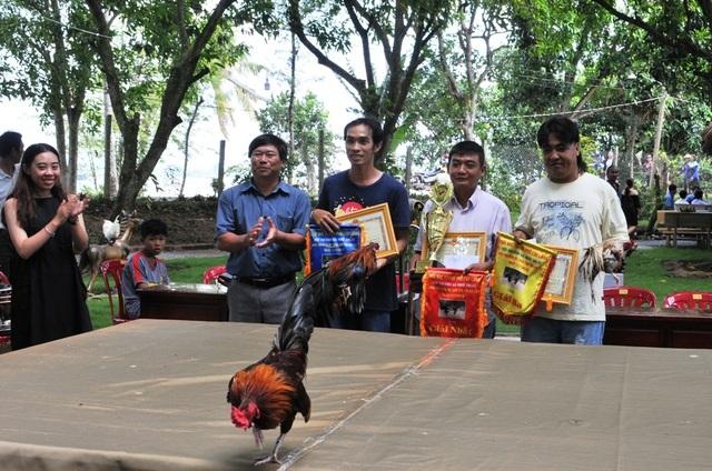 Vượt gần 300km đến Đồng Tháp… thi chọi gà truyền thống - 3