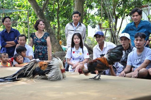 Vượt gần 300km đến Đồng Tháp… thi chọi gà truyền thống - 10