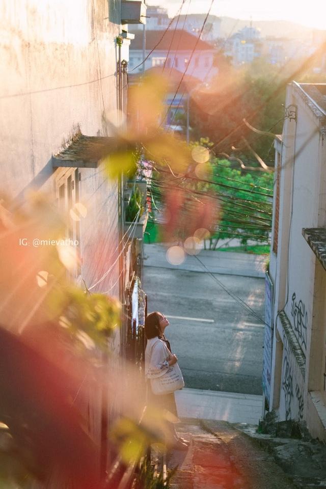 Cặp đôi 9x chụp ảnh du lịch Đà Lạt tình bể bình khiến dân mạng mê mẩn - 6