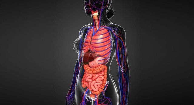 Ba dấu hiệu cho thấy gan đang mắc phải vấn đề nghiêm trọng - 1
