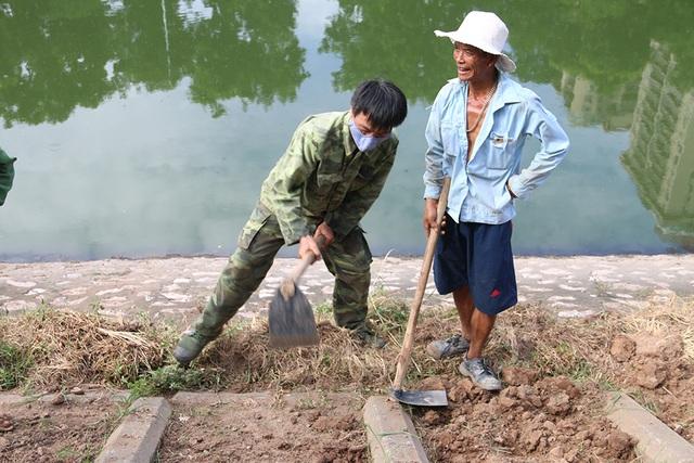 Bờ kè sông Tô Lịch được phủ xanh bằng cỏ lá tre - 2