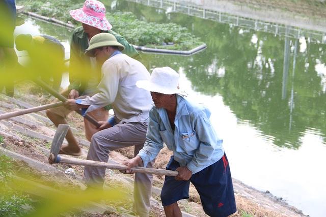 Bờ kè sông Tô Lịch được phủ xanh bằng cỏ lá tre - 4