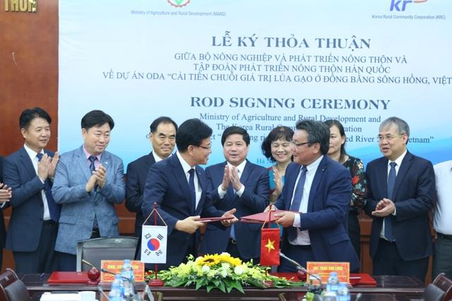 Hàn Quốc hỗ trợ Việt Nam 4,5 triệu USD để nâng cao chất lượng gạo đồng bằng sông Hồng - 1