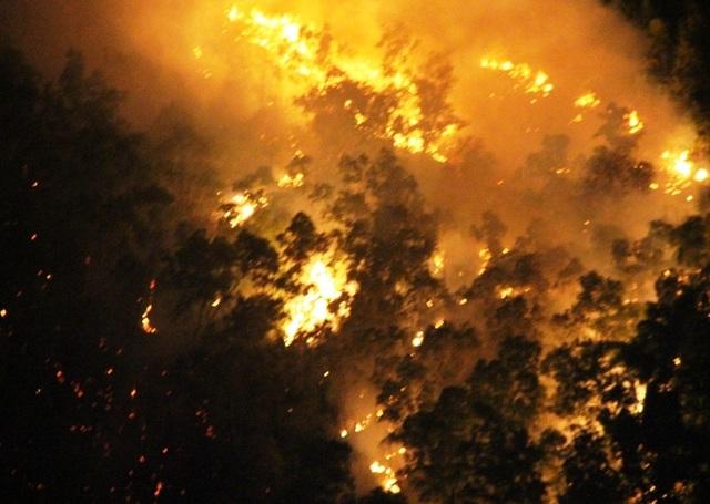 Hơn 600 người xuyên đêm dập đám cháy dữ dội trên núi Bà Hỏa - 1