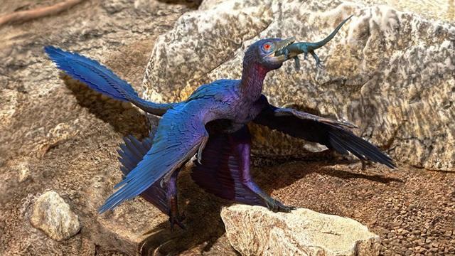 Loài thằn lằn bí ẩn mới được tìm thấy bên trong dạ dày khủng long bay 125 triệu năm tuổi - 1