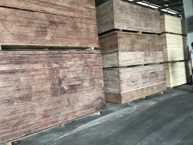 Mất 90% thị phần vì bị Trung Quốc phá giá, doanh nghiệp gỗ ép Việt điêu đứng - 2