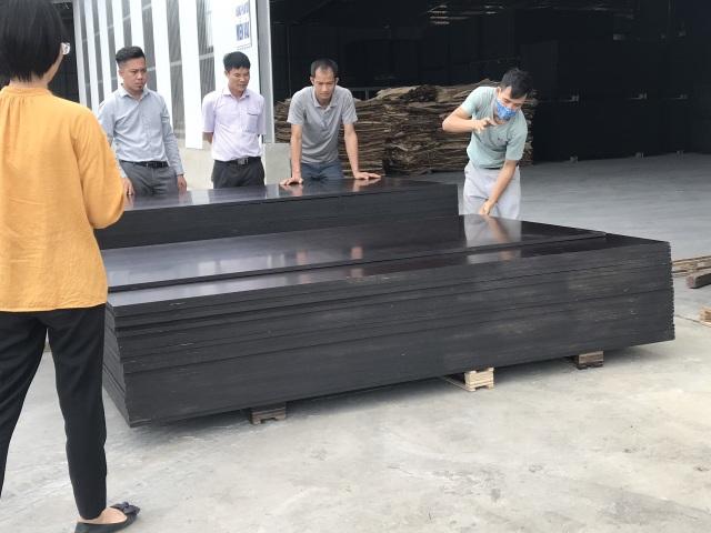 Mất 90% thị phần vì bị Trung Quốc phá giá, doanh nghiệp gỗ ép Việt điêu đứng - 1