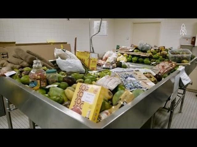 Xem nhân viên sân bay tiêu hủy thực phẩm thu từ khách quốc tế - 1