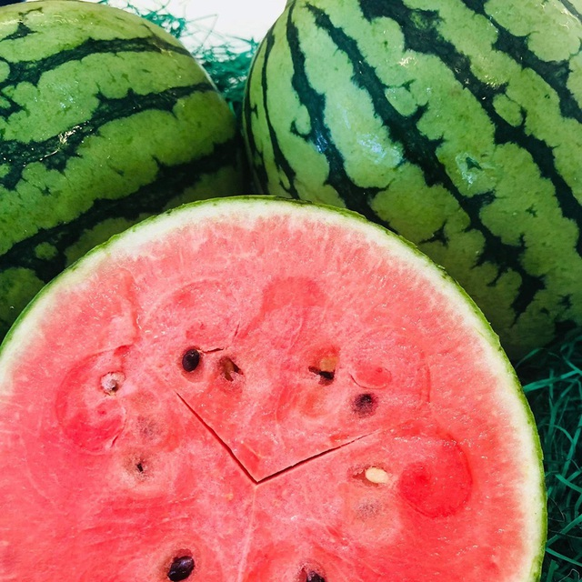 Vài triệu đồng/quả dưa hấu Nhật, người không hảo dưa cũng mua vài quả ăn dần - 2