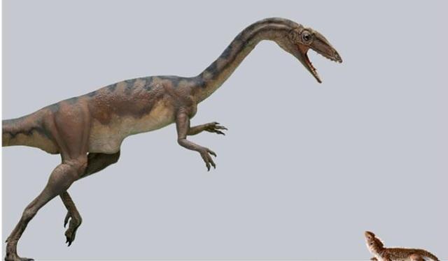 Phát hiện loài khủng long hoàn toàn mới ở Thuỵ Sĩ - 1