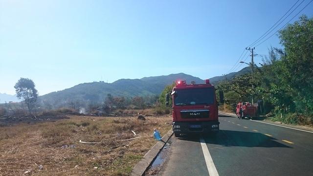 Đà Nẵng: Cháy lớn ở rừng tràm dưới chân núi Sơn Trà - 3