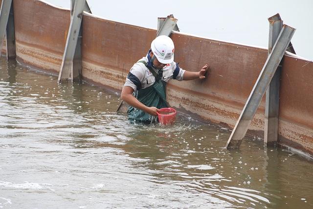 Nước Hồ Tây đổi màu sau thí điểm công nghệ làm sạch Nhật Bản - 3
