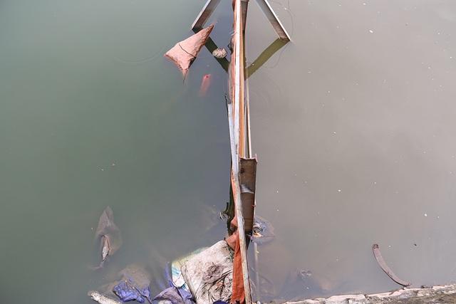 Nước Hồ Tây đổi màu sau thí điểm công nghệ làm sạch Nhật Bản - 7