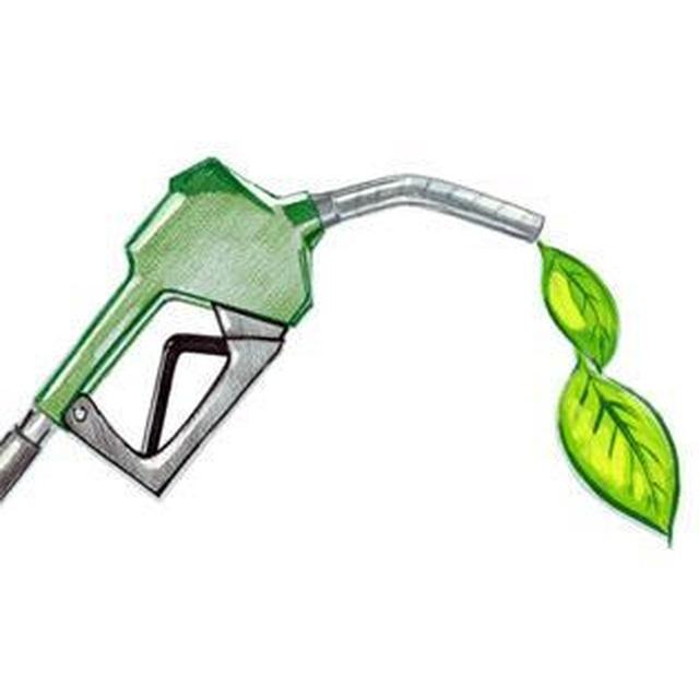 Nhiêu liệu sinh học low-carbon: Nhiều thân thiện môi trường - 1