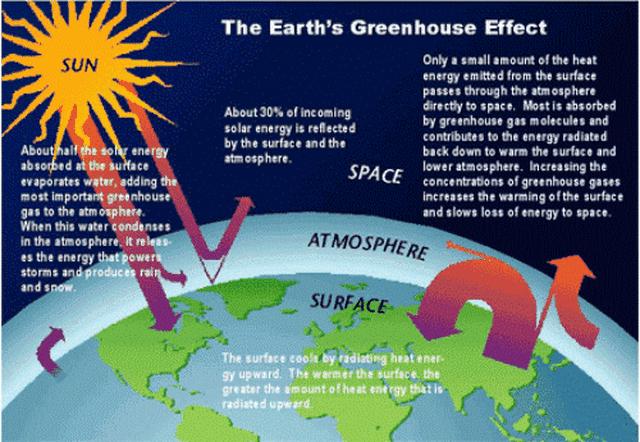 Nhiêu liệu sinh học low-carbon: Nhiều thân thiện môi trường - 4