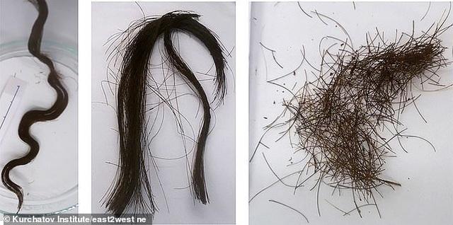 Xác ướp bí ẩn với mái tóc vẫn đen mượt sau 3000 năm - 2
